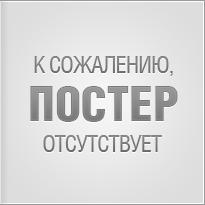 Полицейский с Рублёвки. Новогодний беспредел2